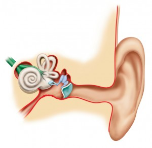 Clogged Ears? Common Causes